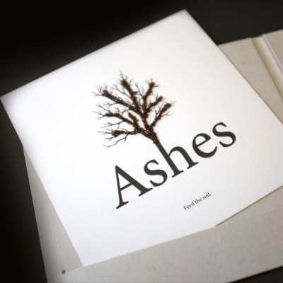 EP »Ashes« Digifile Bookletcard